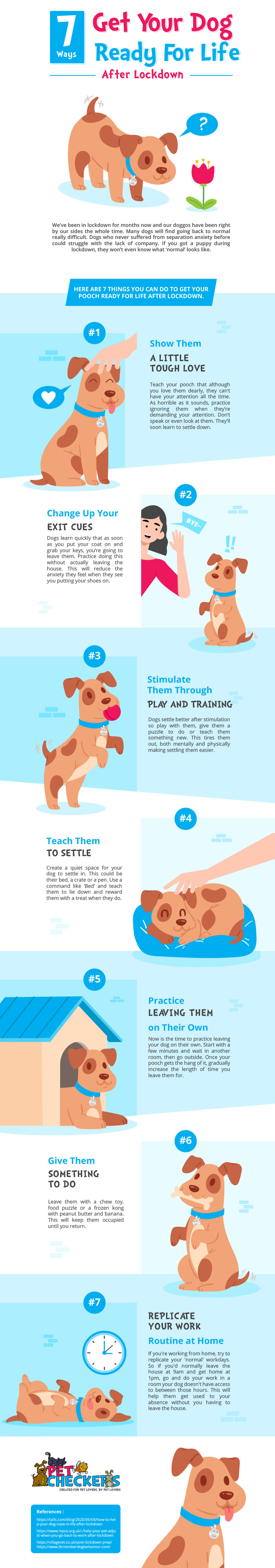 7 ways to get your dog ready for life after lockdown